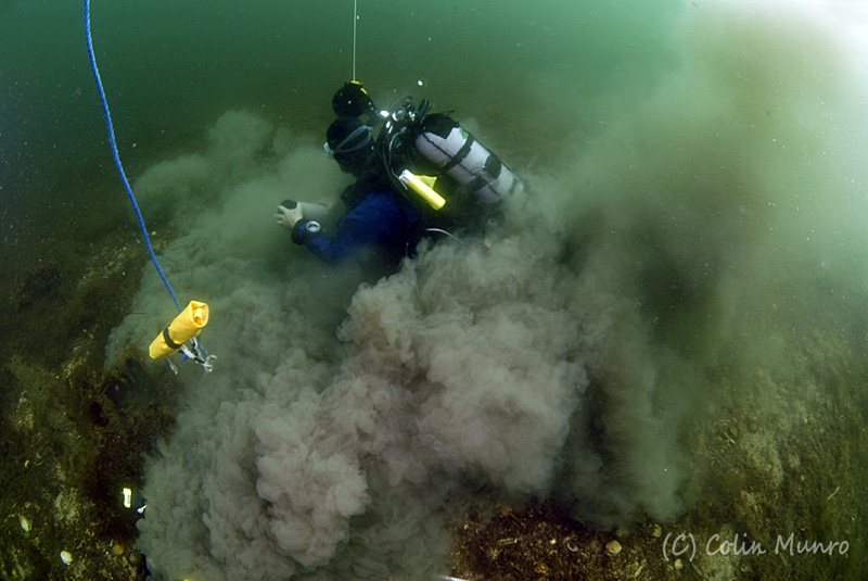 Marine Bio-images diving biologist collecting sediment core samples for infauna analysis, particle size analysis and analysis for carbon content.   Colin Munro