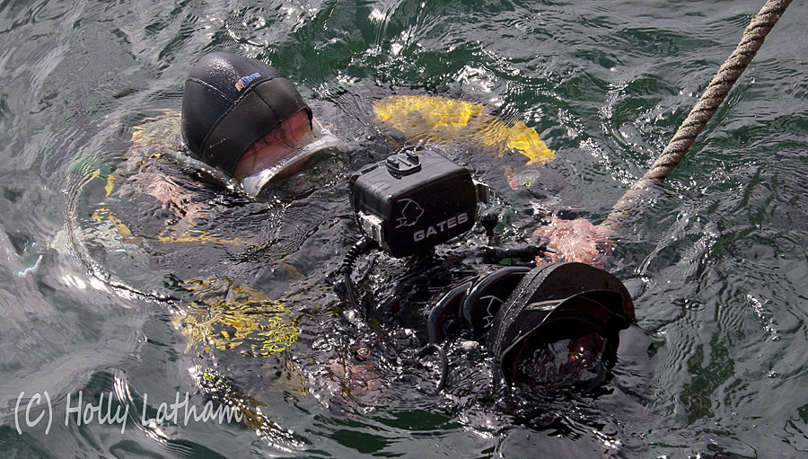 Marine Bio-images diver Colin Munro preparing to dive with Sony EX1 HD video camera to recoding impacts of trawl gear on the seabed.