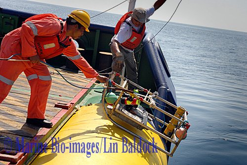 Marine Bio-images towed underwater camera sled being deployed from the stern of a survey vessel in Persian Gulf. www.marine-bio-images.com